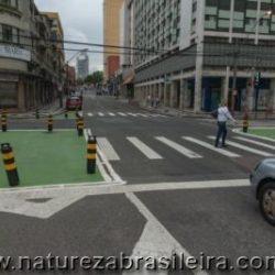 Calçada Verde: Al. Cabral / Al. Dr. Carlos de Carvalho